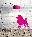 Pudel,-pink