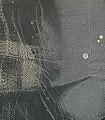 Purity,-M-Gesichter-Federn-Moderne-Muster-FotoTapeten-Grau-Braun