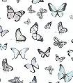 Raja,-col.-5-Tiere-Schmetterlinge-Fauna-Weiß-Multicolor