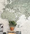 SCHOOL-ATLAS-Welt-FotoTapeten-Grün-Grau-Creme-Ocker