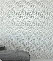 Stan,-col.-6-Blätter-Ranken-Klassische-Muster-Florale-Muster-Gold-Grau-Weiß