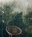 TALES-OF-THE-CARPATHIANS-Landschaft-Florale-Muster-FotoTapeten-Multicolor