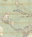 TROPICAL-AMERICA-Welt-FotoTapeten-Grün-Anthrazit-Creme