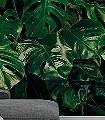 TROPICAL-WALL-Blätter-Florale-Muster-FotoTapeten-Grün-Schwarz