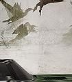 Taiwan,-col.01-Vögel-Fauna-Grau