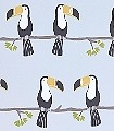 Terry-Toucan,-col.70-Vögel-KinderTapeten-Anthrazit-Schwarz-Weiß-Hellblau