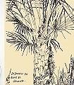 Thèbes-Landschaft-Kunst-Zeichnungen-FotoTapeten