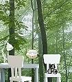 Trees-in-Forest-Bäume-FotoTapeten-Grün-Weiß