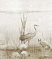 Waterside-sand,-col.-2-Tiere-Bäume-Landschaft-Blätter-Vögel-Fauna-Florale-Muster-Moderne-Muster-FotoTapeten-Braun-Creme
