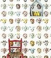 Wilde-Tiere,-süß-Tiere-FotoTapeten-KinderTapeten-Weiß-Multicolor