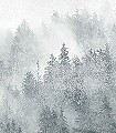YUKONIC,-GREEN-Bäume-Florale-Muster-FotoTapeten-Hellgrün-Creme