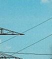 bird_into_the_sky-Wolken-Moderne-Muster-FotoTapeten-Anthrazit-Türkis-Weiß