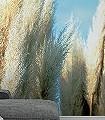 schilf_into_the_sky-Blumen-Moderne-Muster-FotoTapeten-Blau-Creme