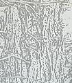 wintertree-bluegrey-Bäume-Äste-Moderne-Muster-Weiß