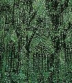 Cologne-Cathedral-|-Green-Carneval-|-Ingo-Krasenbrink-Design--FotoTapeten