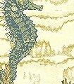 Seahorse,-col.02-Tiere-Unterwasserwelt-Fauna-FotoTapeten-Rot-Gelb-Creme-petrol