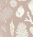 Shells---Rose-Nautic-Korallen-Fauna-Creme-Hellbraun