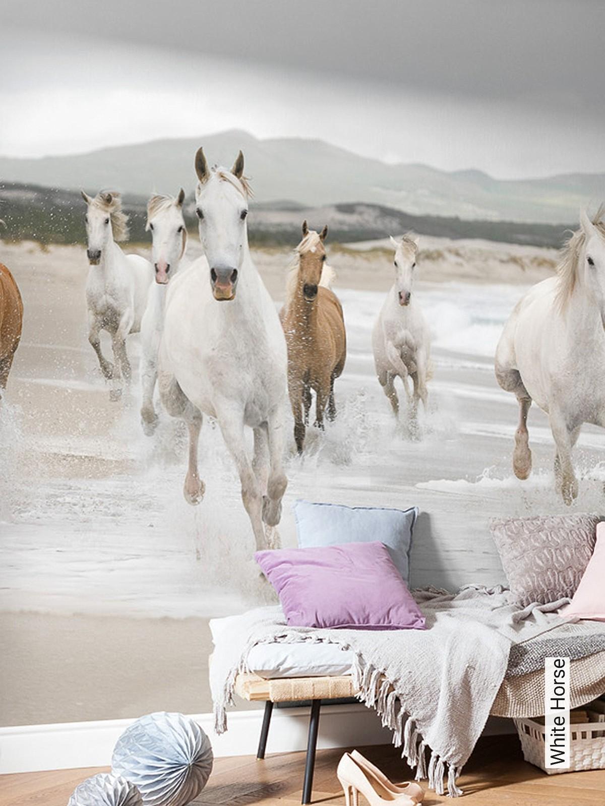 tapete white horse   die tapetenagentur