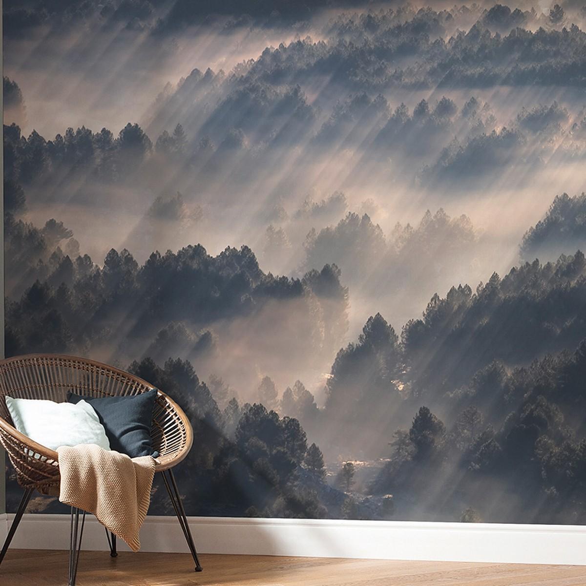 tapete rays die tapetenagentur. Black Bedroom Furniture Sets. Home Design Ideas