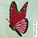 Farfalla, col. 02