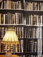 Tapete: New Antique Books, brown