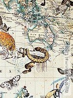 Tapete: World Map Animal, Light