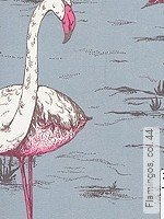 Tapete: Flamingos, col. 44