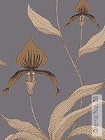 Tapete: Orchid No. 56