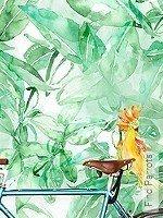 Tapete: Find Parrots