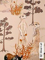 Tapeten  - Orange Mr.Meerkat