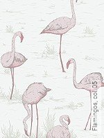 Tapete: Flamingos, col. 05