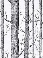 Tapete  - Weiß Woods No.47