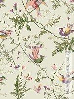 Tapete: Hummingbirds, col.70