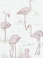 Tapete: Flamingos, col. 05