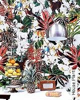 Tapete  - Exotische Tapeten House Plant