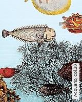 Tapete  - Exotische Tapeten Acquario, 30