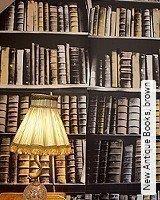 Tapete  - Herbst-Tapeten New Antique Books, brown