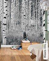 Tapete  - Schwarz-Weiß Woods XXL