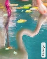 Tapete  - TapetenFrühling Flamingo 1