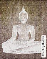 Tapete  - Tapeten in Kupfer und Rotgold Chanting Buddha