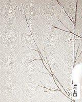 Tapete  - Winter 2014 Elmira
