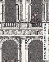 Tapete  - Animal Print Procuratie e Scimmie, 04
