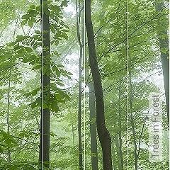 Preis:788,60 EUR - Kollektion(en): - Bäume