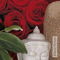Preis:54,39 EUR - Kollektion(en): - Blumen