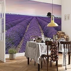 Preis:119,90 EUR - Kollektion(en): - FotoTapete - Rosa