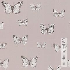 Preis:99,90 EUR - Kollektion(en): - Schmetterlinge