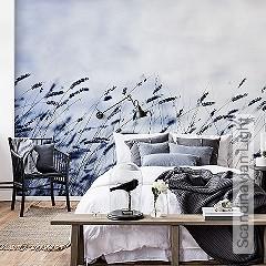Preis:379,10 EUR - Kollektion(en): - Weiß - FotoTapete