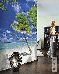 Tapete: Ari Atoll