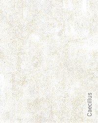 Tapete: Caecilius