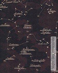 Tapete: Night Sky, chocolate